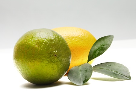 lemon and lime photo