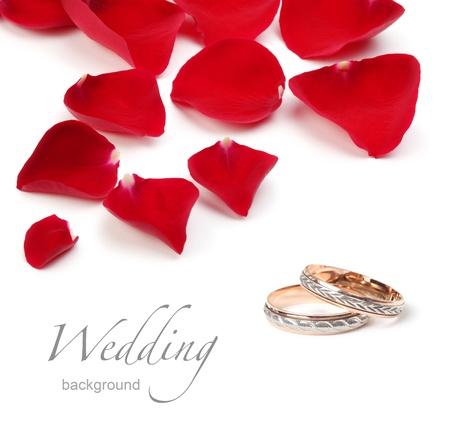 wedding rings and rose petals photo