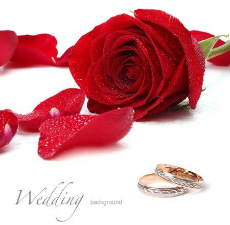 anillos boda: anillos de boda y rose  Foto de archivo