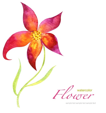 watercolor flower Stock Photo - 9950332
