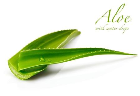 aloe vera: aloe leaf