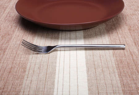 empty plate with fork photo