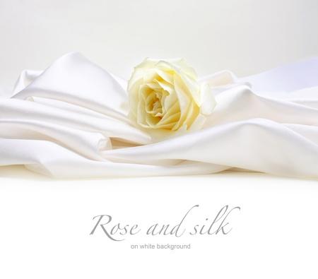 rose on white silk background Reklamní fotografie