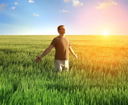 harmony: man in wheat field and sunlight