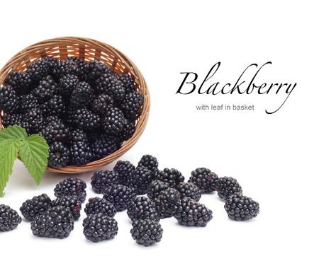 blackberry: Fresh blackberry with leaf in basket Stock Photo