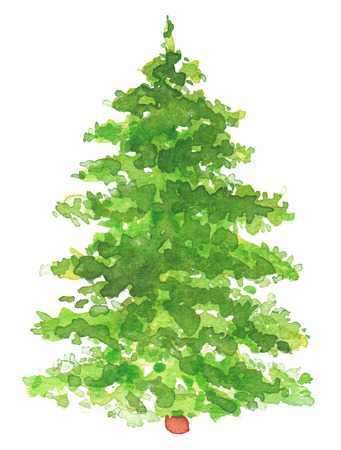 fir: Watercolor hand painted Christmas tree. Texture paper. Stock Photo