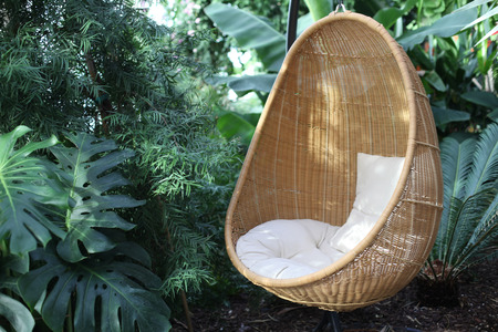 Rattan oval hanging chair witht pillow in tropical plant.