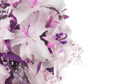 Flower bouquet background. Lilac Lily on white background..