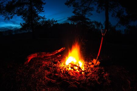food and drink near a big fire in the night forest