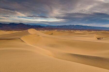 Desert in California. Stock Photo - 12693038