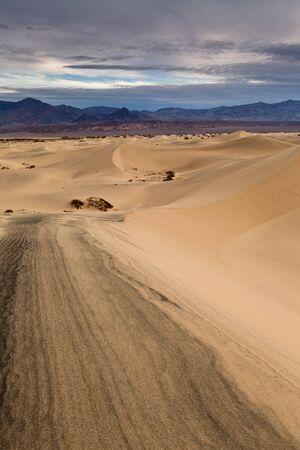 Desert in California Stock Photo - 12693084