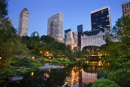 city park skyline: Central Park and Manhattan Skyline. Image of the midtown Manhattan skyline taken from Central Park, New York City.