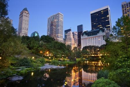 nowy: Central Park i Manhattan Skyline. Obraz w sercu Manhattanu pobranej z Central Park, Nowy Jork.