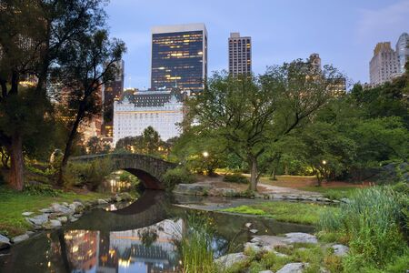 Central Park and Manhattan Skyline. Image of Central Park and Gapstow Bridge in New York City, USA. Stock Photo - 15108120