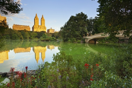 central park: Central Park. Image of The Lake in Central Park, New York City, USA.