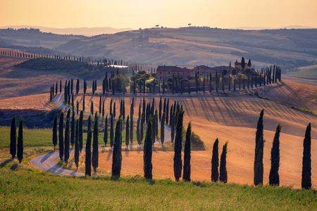Tuscany. Image of Tuscany landscape during summer sunset. Stockfoto - 110687041