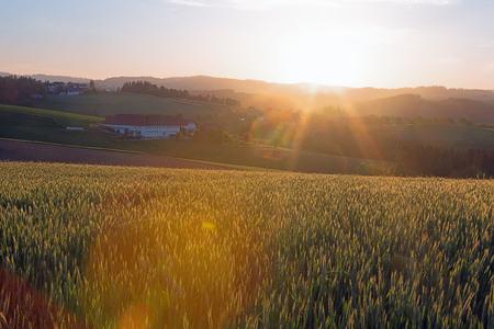 Amanecer en Muehlviertel - el día despierta en Huegelland