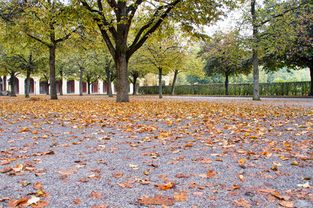walking in Hofgarten Park in Munich on a autumn day, Germany