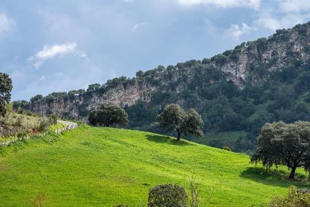 Landscape of Sierra de Grazalema natural park, Cadiz province, Andalusia, Spain. Standard-Bild