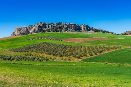 Landscape near Cuevas del Becerro in province Malaga, Andalusia, Spain Stock Photo
