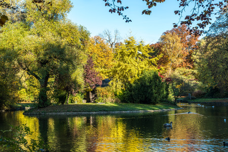 autumn view in The English Garden in Munich in Germany