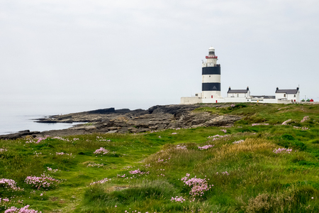 The Hook Lighthouse is a building on Hook Head at the tip of the Hook Peninsula in County Wexford, Ireland. He is one of the oldest lighthouses in the world. 写真素材