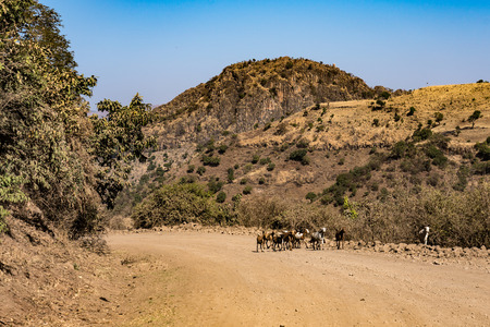Landscape view of the Simien Mountains National Park in Northern Ethiopia 版權商用圖片