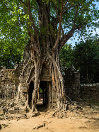 Ancient ruins of Ta Som temple in Angkor Wat complex, Cambodia. Stone temple ruin with jungle tree aerial roots. Abandoned temple demolished by tropical jungle. Reklamní fotografie