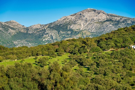 Landscape near Ubrique, Cadiz. Spain, Andalusia in the park of Alcornocales