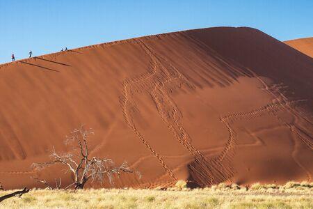 Amazing View of the dunes Sossusvlei. Namib Naukluft National Park. Sand dunes in the pan of Sossusvlei. Namibia. Africa. Reklamní fotografie
