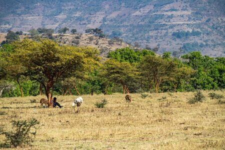 Landscape view near the Blue Nile falls. Tis-Isat Falls, meaning great smoke in Amharic in Amara region of Ethiopia, Eastern Africa