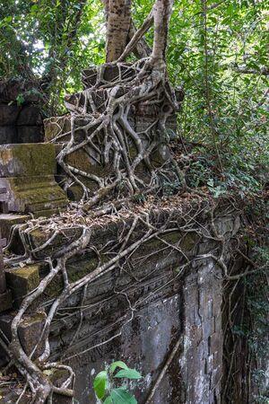 Ruins of ancient Beng Mealea Temple over jungle, Cambodia. Reklamní fotografie