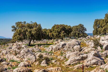Landschaft in der Nähe der kleinen Stadt Cuevas del Becerro in der Provinz Malaga, Andalusien, Spanien