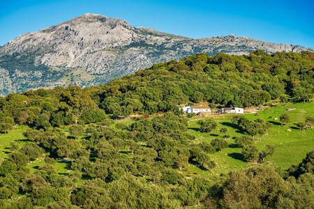 Landscape near Ubrique, Cadiz. This village is part of the pueblos blancos, white villages, in southern Spain Andalusia region, and reminds the Arab past