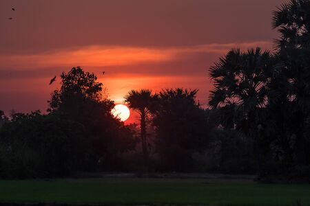 Sunset in tropical rural district, Siem Reap, Cambodia