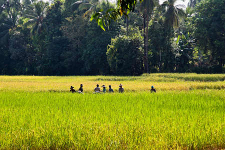 Kyaiktiyo, Myanmar - Nov 06, 2019: Working people of myanmar, former Burma on the road from Yangon to Kyaiktiyo, Asia Redactioneel