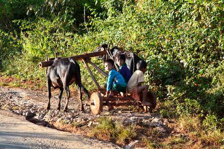 Pindaya, Myanmar - Nov 08, 2019: Working people of myanmar, former Burma on the road from Heho to Pindaya, Asia