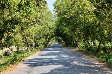 Pindaya, Myanmar - Nov 06, 2019: Landscape view of myanmar countryside at pindaya, former Burma, Asia