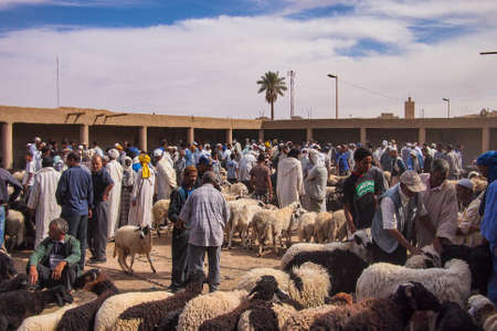 Rissani, Morocco - Oct 18, 2019: Sheep market in the Souk of the city of Rissani in Morocco. Moroccan people buying and selling sheeps, 3 days per week