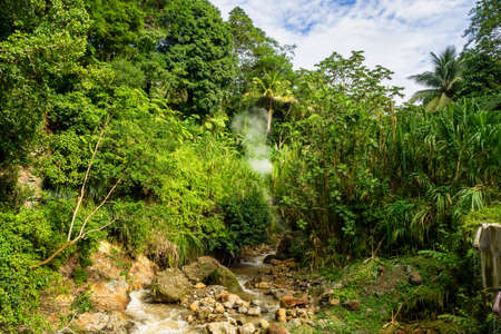 Landscape view on trail to the Trafalgar waterfalls. Morne Trois Pitons National Park, Dominica, Leeward Islands Imagens
