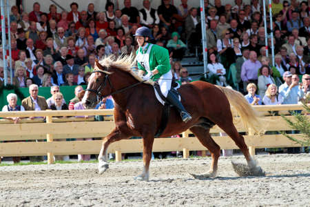 Munich, Germany - September 26, 2018: horse race at Oktoberfest in Munich Germany