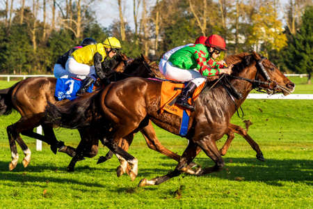 Munich, Germany - Oct 07, 2019: Horse racing at the racecourse in Munich-Riem, Germany, Europe Editorial
