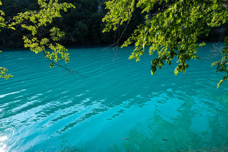 Beautiful landscape in the Plitvice Lakes National Park in Croatia. One of the oldest and largest national parks in Croatia.