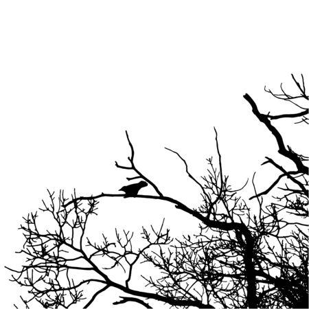 Vector corvo nero sagoma di un albero. Immagine in bianco corvo silhouette su sfondo bianco. Illustrazione vettoriale.