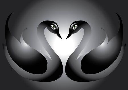Swan Loves