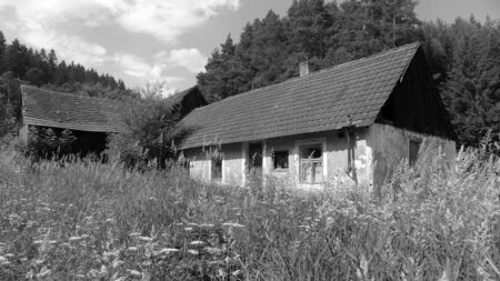homestead: Abandoned homestead in summer, black and white