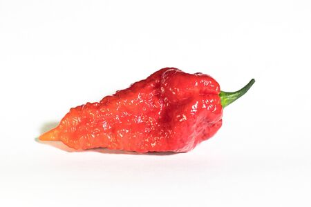 Isolated fruit of raw red and orange Bhut Jolokia Orange chilli pepper on white background