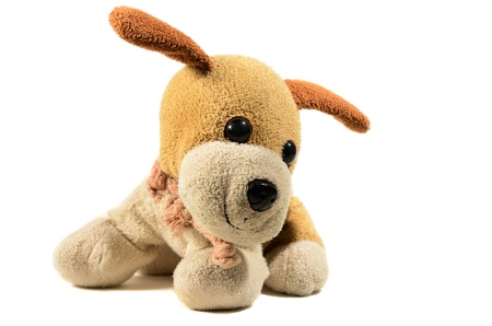 toy small dog on an isolated background Stock Photo - 12204364
