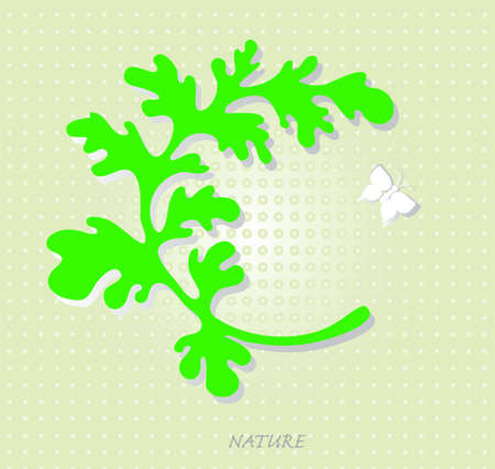 background with a picture of a green leaf and white butterflies  Vector