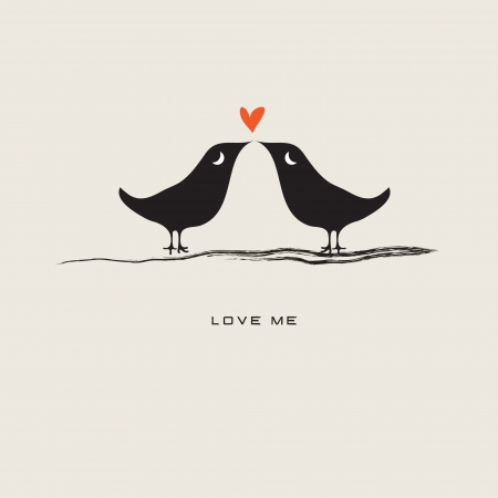 lovebirds: Pair of lovebirds isolated on gray background